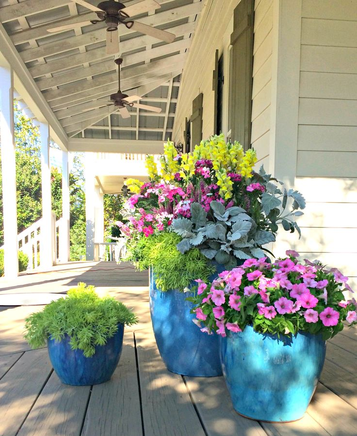 How To use Potted Plants AtHome